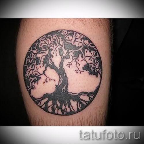 Тату дерево жизни фото для статьи про значение татуировки 19