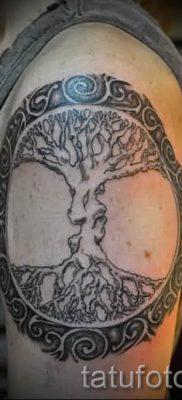 Тату дерево жизни фото для статьи про значение татуировки  26