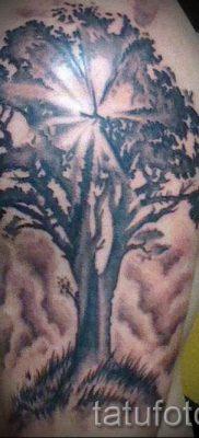 Тату дерево жизни фото для статьи про значение татуировки  28