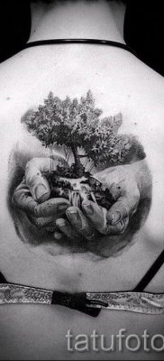 Тату дерево жизни фото для статьи про значение татуировки  32