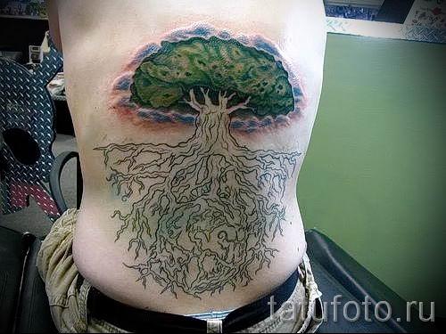 Тату дерево жизни фото для статьи про значение татуировки 43