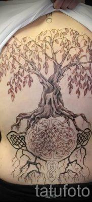 Тату дерево жизни фото для статьи про значение татуировки  46