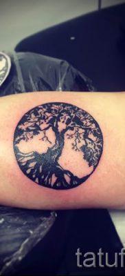 Тату дерево жизни фото для статьи про значение татуировки  48