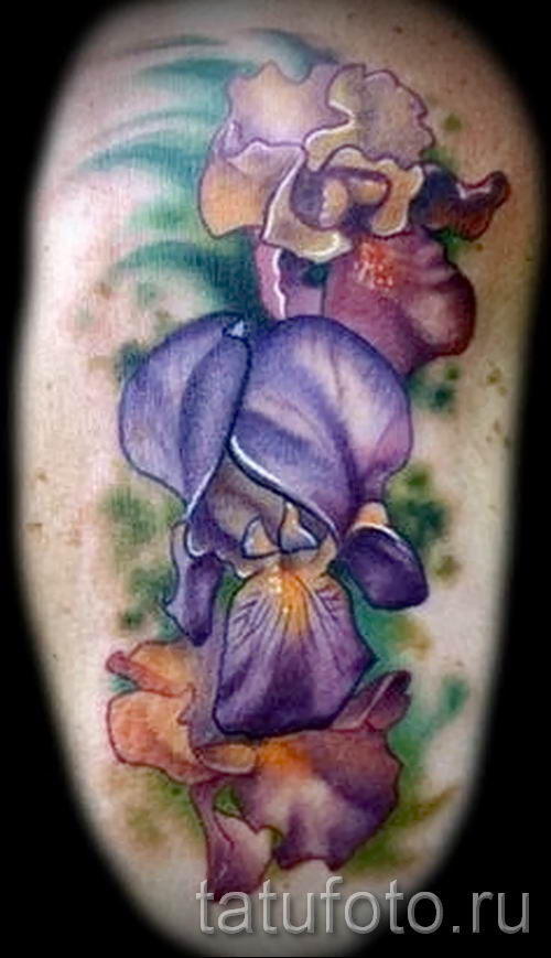 Фото пример тату ирис для статьи про значение татуировки с ирисом 1
