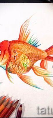 Фото тату золотая рыбка для статьи про значение рисунка татуировки – tatufoto.ru – 14