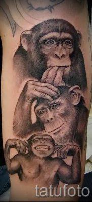 Фото тату обезьяна как пример для статьи про значение татуировки – tatufoto.ru – 35