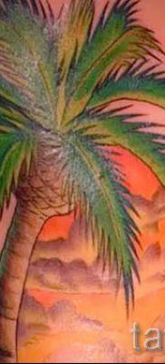 Фото тату пальма для статьи про значение татуировки пальма – tatufoto.ru – 51