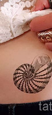 Фото тату ракушка для статьи про значение ракушки в татуировке – tatufoto.ru – 26
