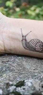Фото тату ракушка для статьи про значение ракушки в татуировке – tatufoto.ru – 27