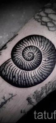 Фото тату ракушка для статьи про значение ракушки в татуировке – tatufoto.ru – 63