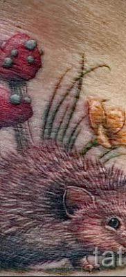 тату ежик фото – примеры для статьи про значение тату еж – tatufoto.ru – 14