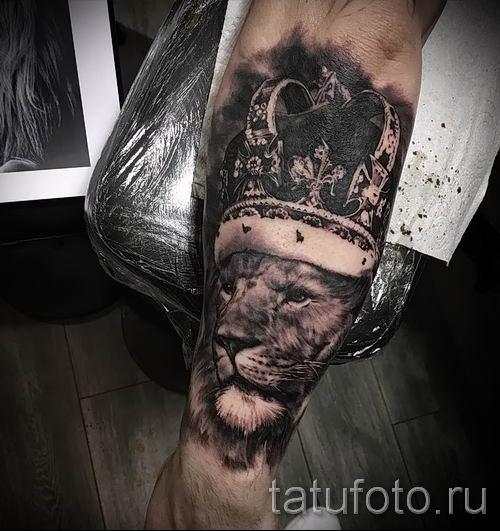 тату лев с короной - фото для статьи про значение татуировки - tatufoto.ru - 41