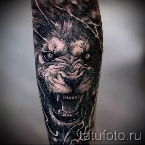 тату лев с короной - фото для статьи про значение татуировки - tatufoto.ru - 43