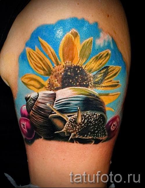 тату улитка фото - пример тату для статьи про значение татуировки - tatufoto.ru - 1