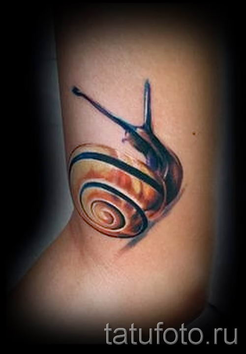 тату улитка фото - пример тату для статьи про значение татуировки - tatufoto.ru - 9