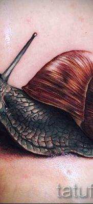 тату улитка фото – пример тату для статьи про значение татуировки – tatufoto.ru – 15