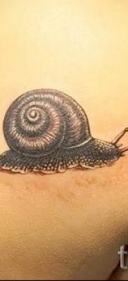 тату улитка фото – пример тату для статьи про значение татуировки – tatufoto.ru – 22