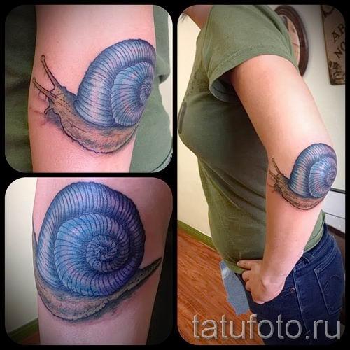 тату улитка фото - пример тату для статьи про значение татуировки - tatufoto.ru - 28