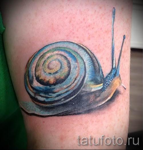 тату улитка фото - пример тату для статьи про значение татуировки - tatufoto.ru - 30