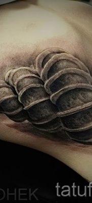 тату улитка фото – пример тату для статьи про значение татуировки – tatufoto.ru – 31