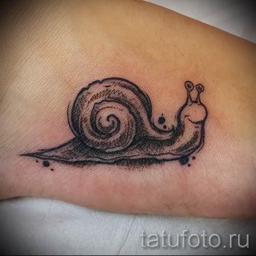 тату улитка фото - пример тату для статьи про значение татуировки - tatufoto.ru - 36