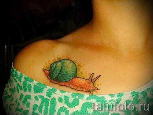 тату улитка фото - пример тату для статьи про значение татуировки - tatufoto.ru - 52