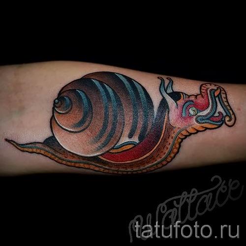 тату улитка фото - пример тату для статьи про значение татуировки - tatufoto.ru - 54