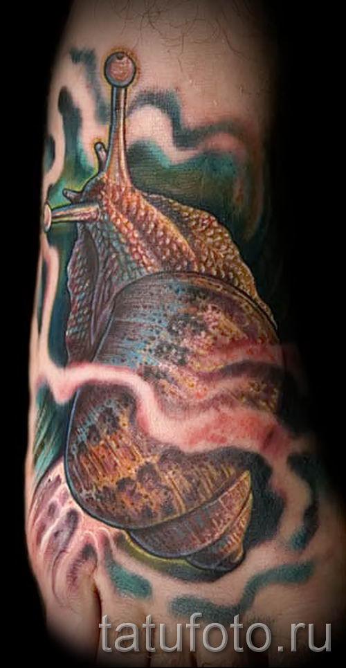 тату улитка фото - пример тату для статьи про значение татуировки - tatufoto.ru - 57