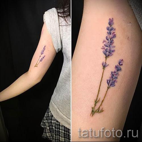 фото пример тату лаванда для статьи про значение этой татуировки 14