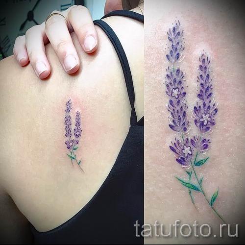 фото пример тату лаванда для статьи про значение этой татуировки 58