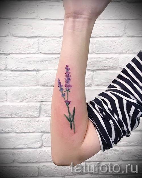 фото пример тату лаванда для статьи про значение этой татуировки 59