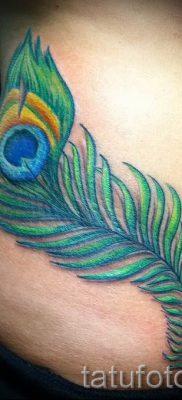 Фото классной наколки перо павлина рисунок которой подойдет для ступни или спины – значение тату материал