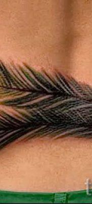 Фото стильной татуировки перо павлина рисунок которой подойдет для туловища или руки – значение тату материал