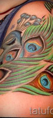 Фотография необычной тату перо павлина рисунок которой подойдет для икры или спины – значение тату материал