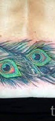 Пример крутой татуировки перо павлина рисунок которой подойдет для ступни или лопатки – значение тату материал