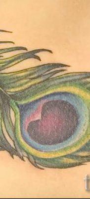 Вариант оригинальной тату перо павлина эскиз которой подойдет для туловища или груди – значение тату материал