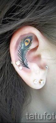 Фотография необычной татуировки перо павлина рисунок которой подойдет для туловища или предплечья – значение тату материал