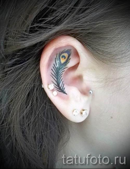 Фотография необычной татуировки перо павлина рисунок которой подойдет для туловища или предплечья - значение тату материал