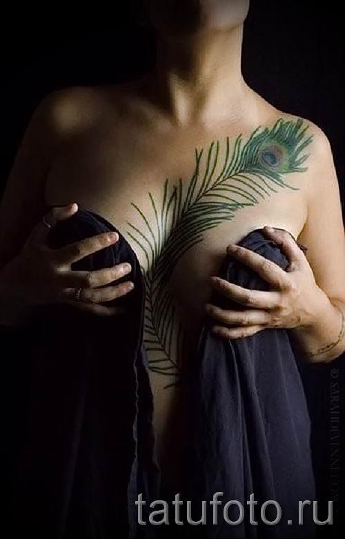 Вариант крутой наколки перо павлина рисунок которой подойдет для голени или груди - значение тату материал