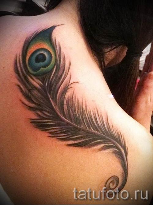 Фотография классной тату перо павлина рисунок которой подойдет для туловища или лопатки - значение тату материал