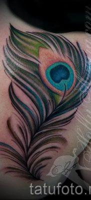 Пример интересной татуировки перо павлина эскиз которой подойдет для ноги или предплечья – значение тату материал