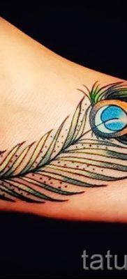 Фотография необычной наколки перо павлина рисунок которой подойдет для икры или лопатки – значение тату материал