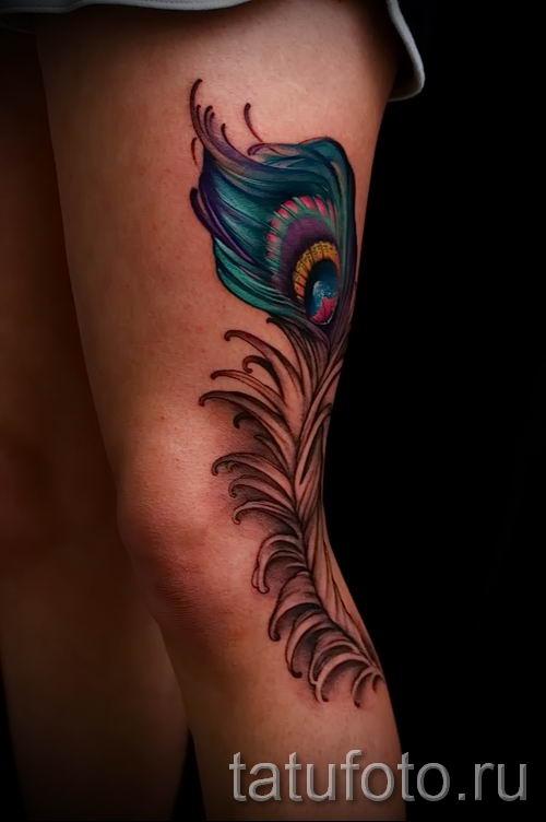 Фото стильной тату перо павлина рисунок которой подойдет для икры или груди - значение тату материал