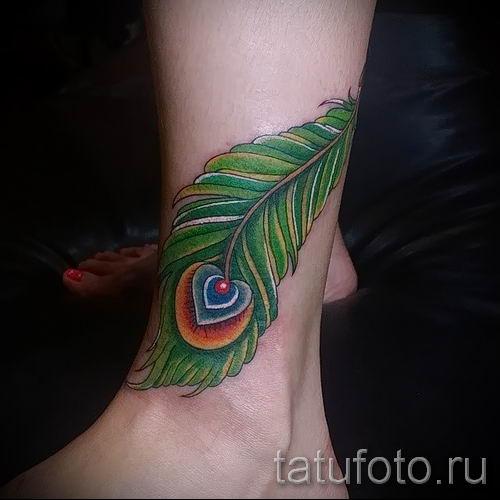 фото пример варианта тату с пером павлина - для статьи про значение это татуировки 2
