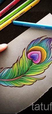 фото пример варианта тату с пером павлина – для статьи про значение это татуировки 5