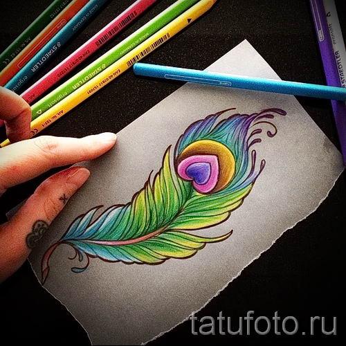 фото пример варианта тату с пером павлина - для статьи про значение это татуировки 5