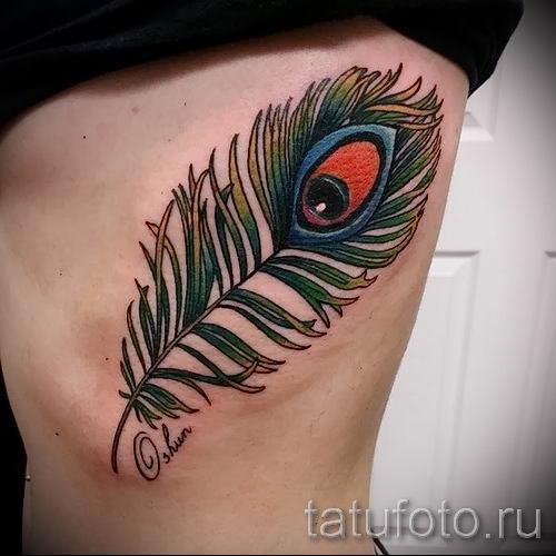 фото пример варианта тату с пером павлина - для статьи про значение это татуировки 6