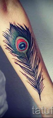 фото пример варианта тату с пером павлина – для статьи про значение это татуировки 8