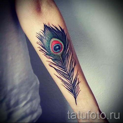 фото пример варианта тату с пером павлина - для статьи про значение это татуировки 8