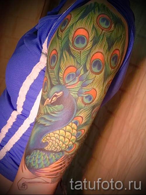 фото пример варианта тату с пером павлина - для статьи про значение это татуировки 10